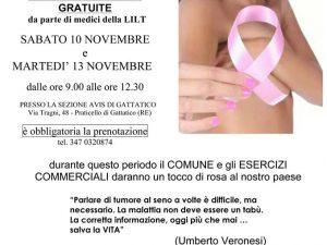 10-13 novembre 2018 – Nastro Rosa Comune di Gattatico